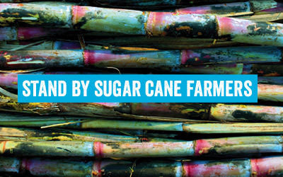 Stand by sugar cane farmers thumbnail
